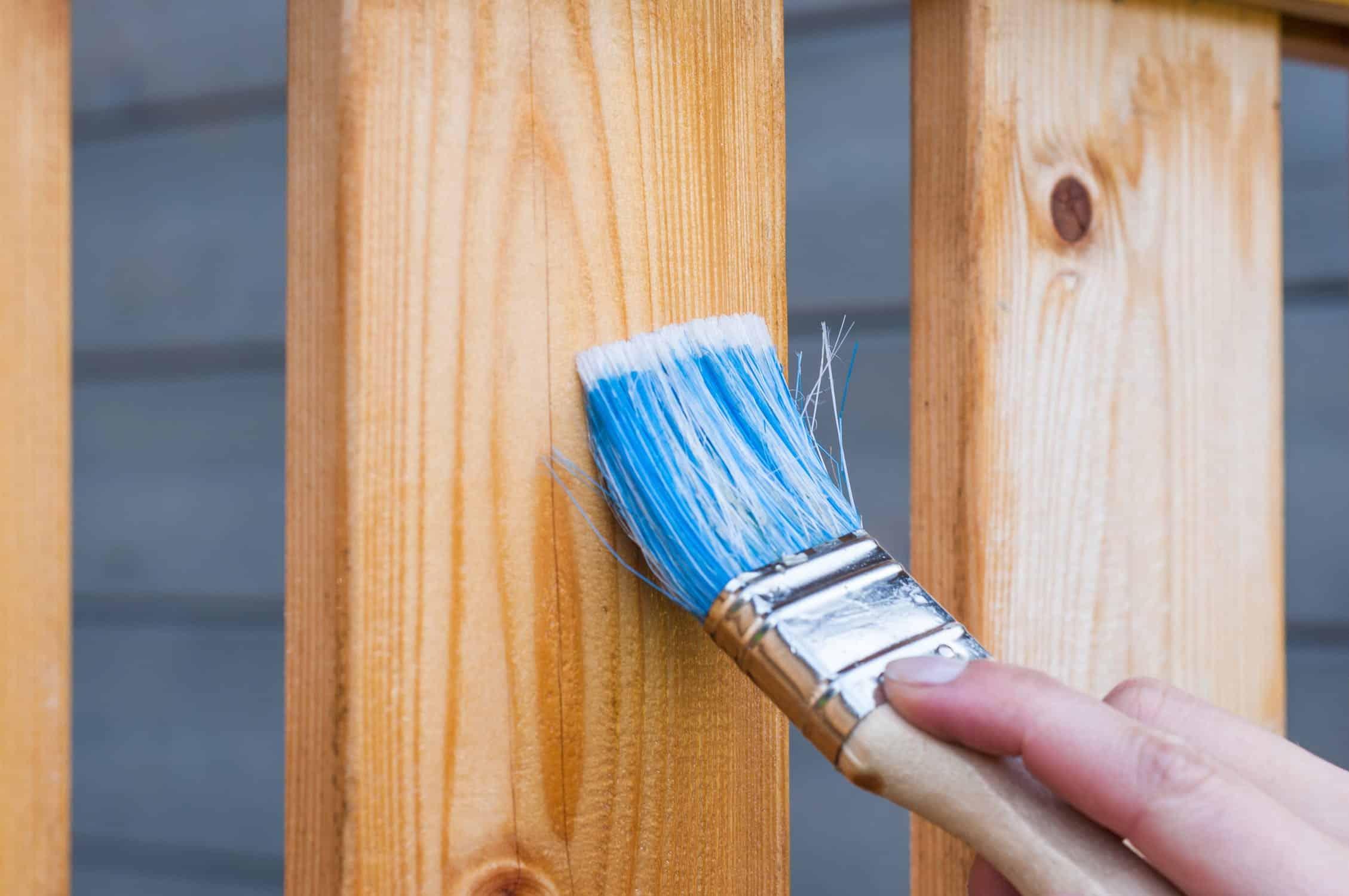 Application d'un vernis sur du bois au pinceau pour le protéger