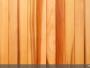 Red cedar : les raisons d'un succès