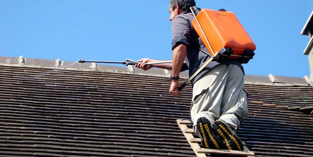 Démoussage de toiture, le rôle indispensable des couvreurs