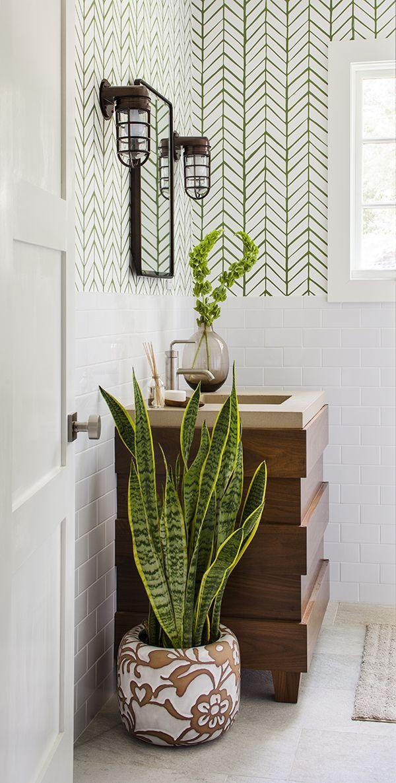 plantes-salle-de-bain